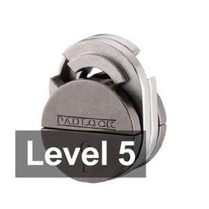 Level 5 Expert